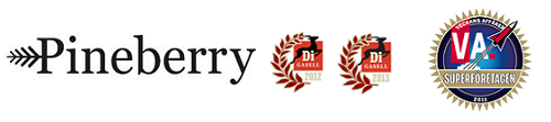 Pineberry AB logo
