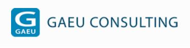 GAEU Consulting AB logo