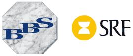 BBS Accounting Service AB logo