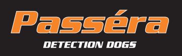Detact Security Solutions AB logo